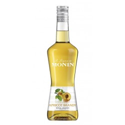 Licor Monin Melocotón